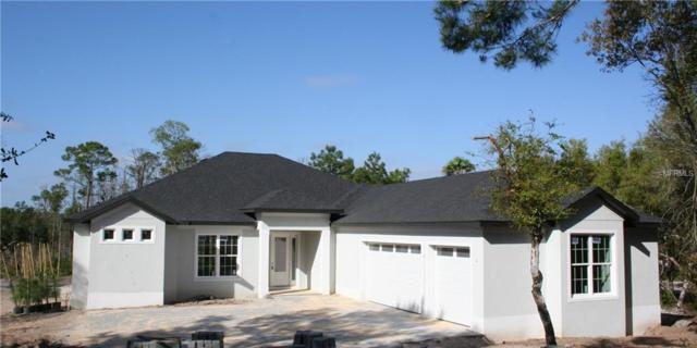1666 Onondaga Drive, Geneva, FL 32732 (MLS #O5769838) :: RE/MAX Realtec Group
