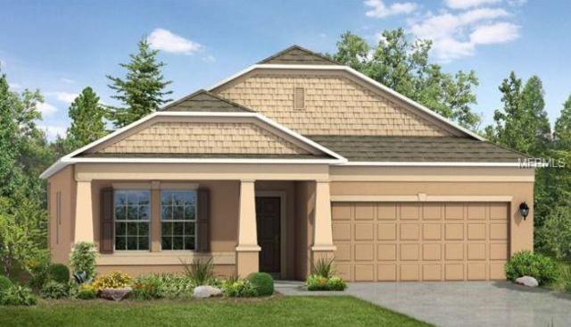 4433 Windy Hammock Way, Palmetto, FL 34221 (MLS #O5770125) :: Medway Realty