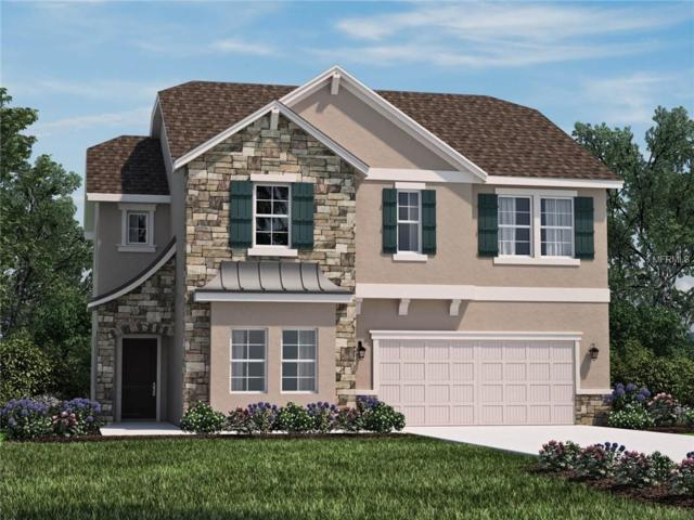 3112 Jade Tree Point, Oviedo, FL 32765 (MLS #O5770399) :: The Duncan Duo Team