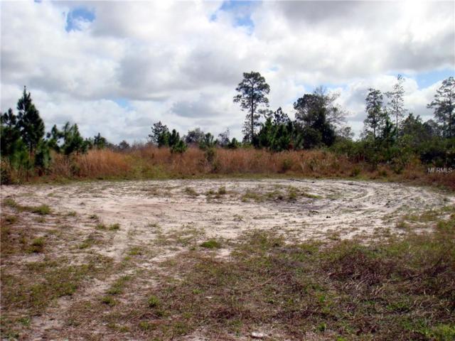 1007 Greenbriar Drive, Christmas, FL 32709 (MLS #O5770446) :: Cartwright Realty