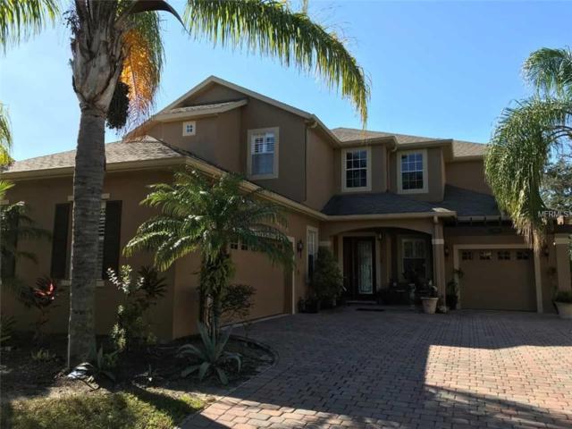 4613 Indian Deer Road, Windermere, FL 34786 (MLS #O5770624) :: Bustamante Real Estate