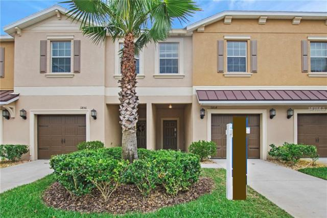 11854 Greengate Drive, Hudson, FL 34669 (MLS #O5770668) :: Griffin Group