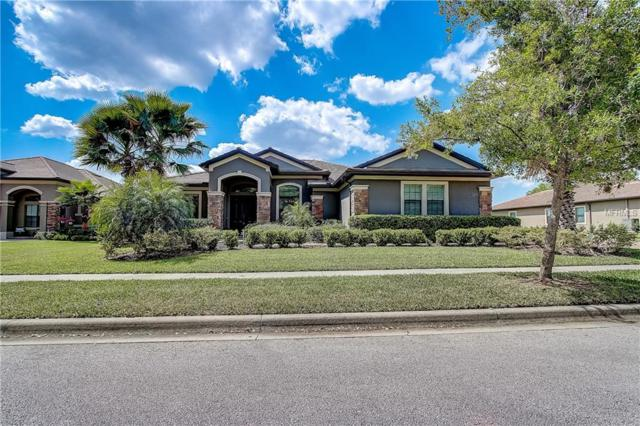 25479 Hawks Run Lane, Sorrento, FL 32776 (MLS #O5770673) :: The Light Team