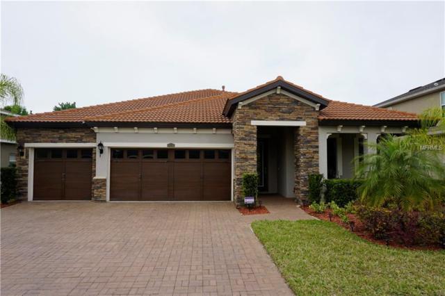 24105 San Giovanni Drive, Land O Lakes, FL 34639 (MLS #O5771024) :: Jeff Borham & Associates at Keller Williams Realty