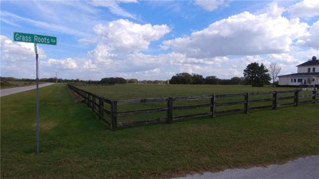Grass Roots Road, Groveland, FL 34736 (MLS #O5771111) :: Bustamante Real Estate