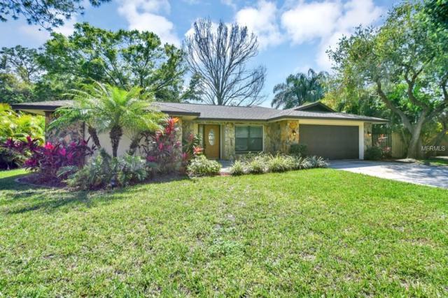 3045 Pin Oak Drive, Clearwater, FL 33759 (MLS #O5771115) :: Burwell Real Estate