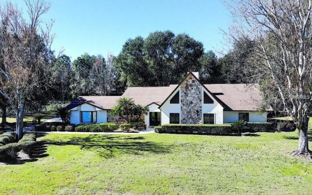 4130 Equestrian Lane, Windermere, FL 34786 (MLS #O5771423) :: Your Florida House Team