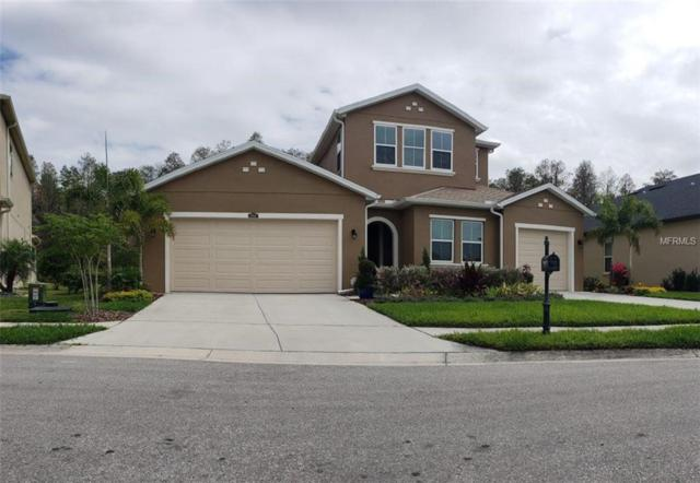 1966 Marshberry Court, Trinity, FL 34655 (MLS #O5771558) :: Jeff Borham & Associates at Keller Williams Realty