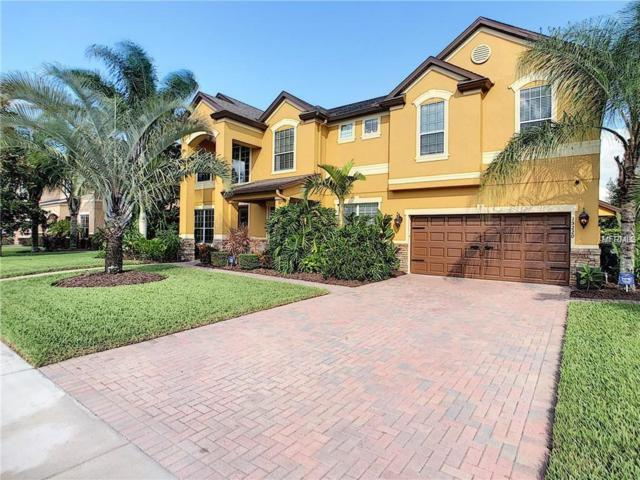 15220 Firelight Drive, Winter Garden, FL 34787 (MLS #O5771946) :: Your Florida House Team