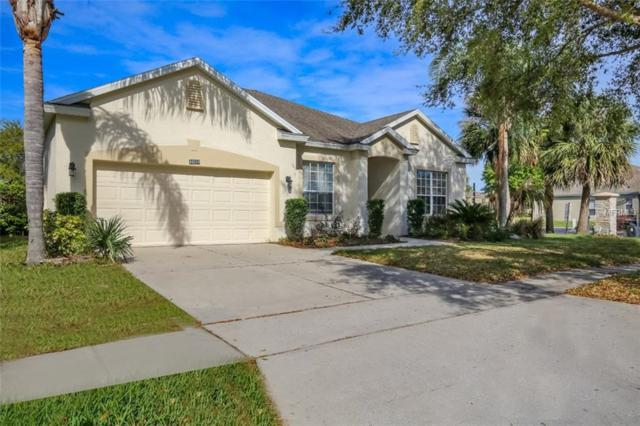 10235 Marsh Pine Circle, Orlando, FL 32832 (MLS #O5772050) :: The Light Team