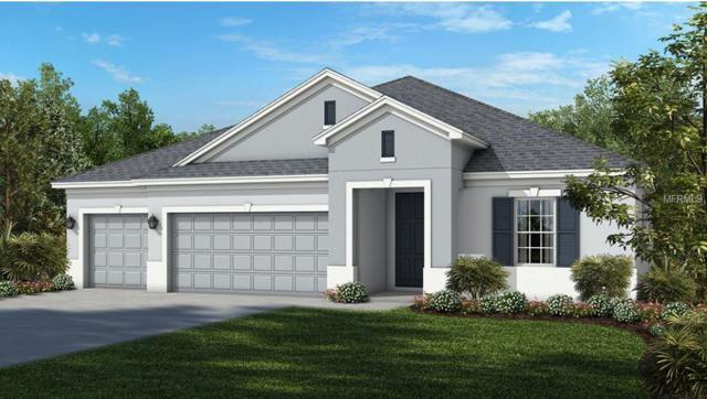 14223 Sunridge Boulevard, Winter Garden, FL 34787 (MLS #O5772054) :: Your Florida House Team