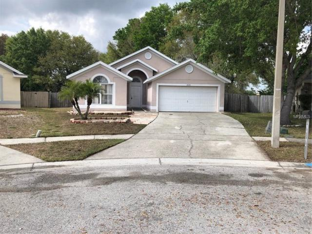 1050 Pineview Court, Apopka, FL 32712 (MLS #O5772287) :: Griffin Group