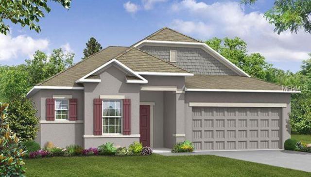 4216 Hollow Stump Run, Palmetto, FL 34221 (MLS #O5772337) :: Burwell Real Estate