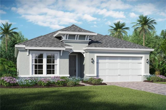 7952 Hanson Bay Place, Kissimmee, FL 34747 (MLS #O5772689) :: RE/MAX Realtec Group