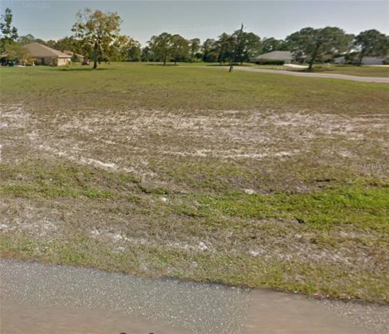 16171 Maya Circle, Punta Gorda, FL 33955 (MLS #O5772754) :: Baird Realty Group