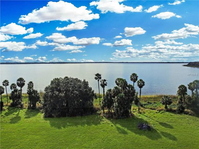 Lake Yale Road, Grand Island, FL 32735 (MLS #O5772906) :: Mark and Joni Coulter | Better Homes and Gardens