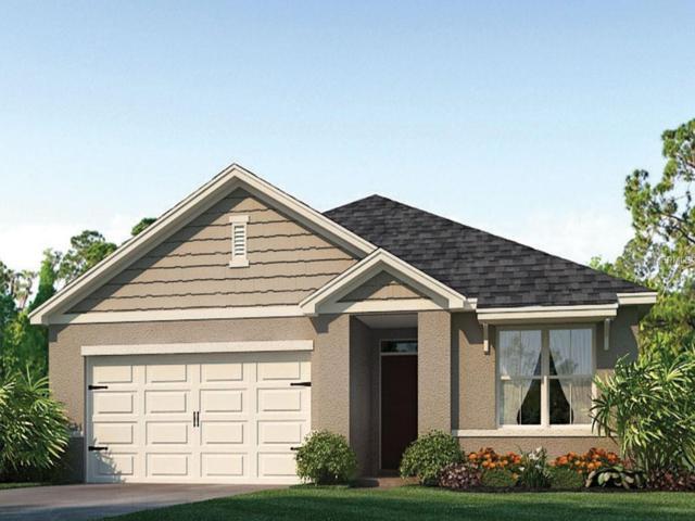 2444 White Poppy Drive, Kissimmee, FL 34747 (MLS #O5772938) :: Bustamante Real Estate