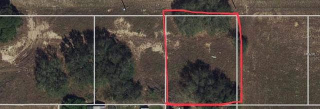 1721 W Atchison Road, Avon Park, FL 33825 (MLS #O5773021) :: Baird Realty Group