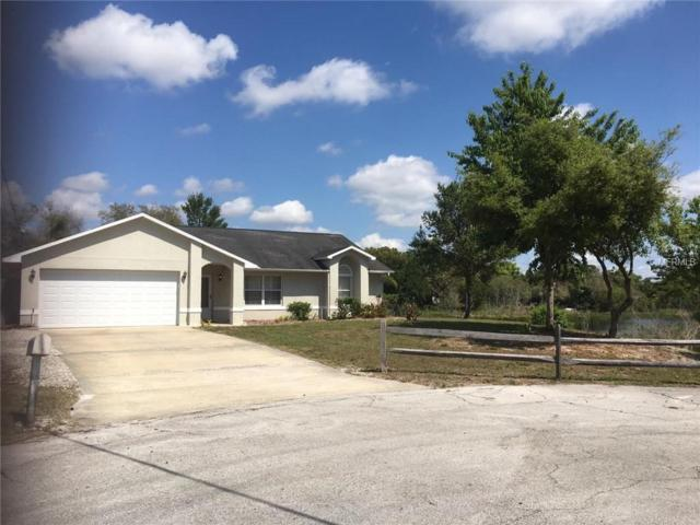 1229 Castle Court, Deltona, FL 32725 (MLS #O5773147) :: Premium Properties Real Estate Services