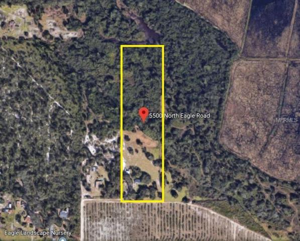 5500 N Eagle Road, Saint Cloud, FL 34771 (MLS #O5773165) :: Cartwright Realty
