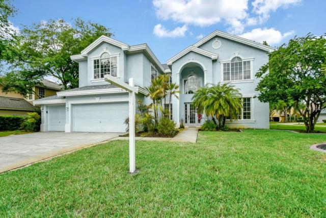 4063 Ligustrum Drive, Palm Harbor, FL 34685 (MLS #O5773436) :: The Duncan Duo Team