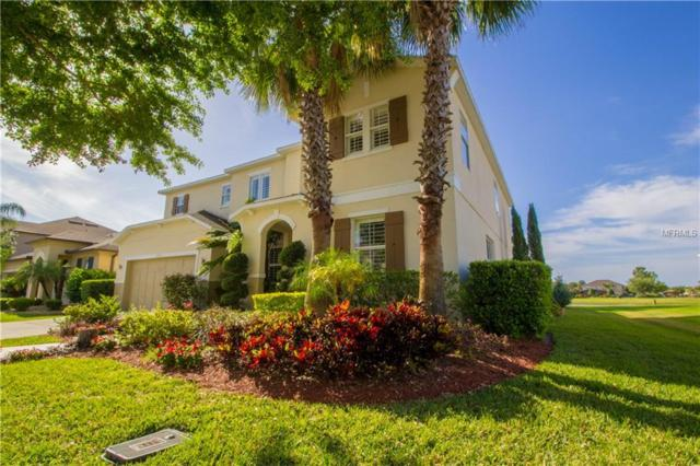 10145 Chorlton Circle, Orlando, FL 32832 (MLS #O5773663) :: RE/MAX Realtec Group