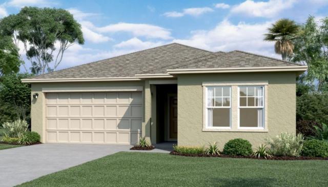 3022 Trubs Trace Boulevard, New Smyrna Beach, FL 32168 (MLS #O5773789) :: The Duncan Duo Team