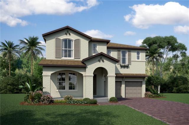 8324 Vivaro Isle Way, Windermere, FL 34786 (MLS #O5773983) :: Bustamante Real Estate