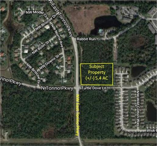 Nw East Torino Pkwy & Turtle Dove Ln, Port Saint Lucie, FL 34986 (MLS #O5774103) :: The Duncan Duo Team