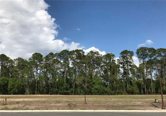 10247 Symphony Grove Drive, Golden Oak, FL 32836 (MLS #O5774205) :: The Duncan Duo Team