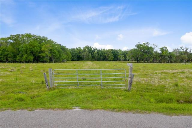 Brumley Road, Chuluota, FL 32766 (MLS #O5774459) :: The Duncan Duo Team