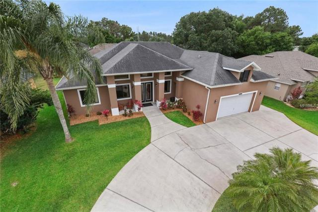 20492 Netherland Street, Orlando, FL 32833 (MLS #O5775163) :: Dalton Wade Real Estate Group