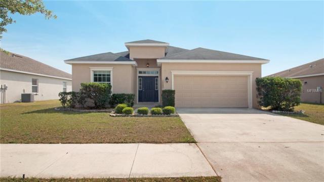 10645 Carloway Hills Drive, Wimauma, FL 33598 (MLS #O5775313) :: Team Bohannon Keller Williams, Tampa Properties