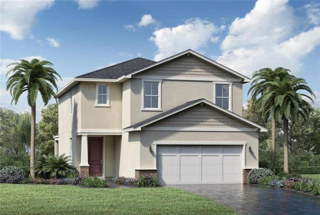 3808 Corona Court, Sanford, FL 32773 (MLS #O5775564) :: The Duncan Duo Team