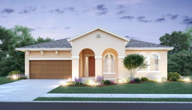 3210 Coastal View Court, Kissimmee, FL 34746 (MLS #O5775967) :: Premium Properties Real Estate Services