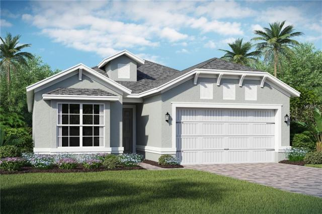 2224 Antilles Club Drive, Kissimmee, FL 34747 (MLS #O5776191) :: RE/MAX Realtec Group