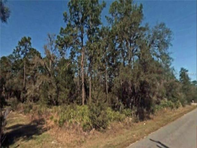 Undetermined, Dunnellon, FL 34432 (MLS #O5776218) :: The Duncan Duo Team