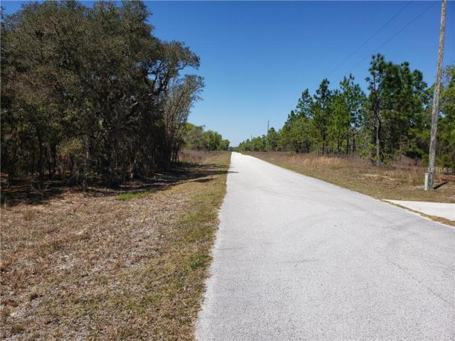 Sw Evergreen, Dunnellon, FL 34431 (MLS #O5776455) :: Baird Realty Group