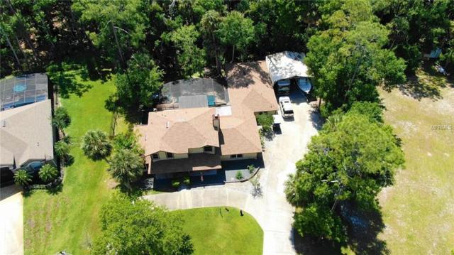 342 Old Mill Road, Enterprise, FL 32725 (MLS #O5776952) :: The Duncan Duo Team