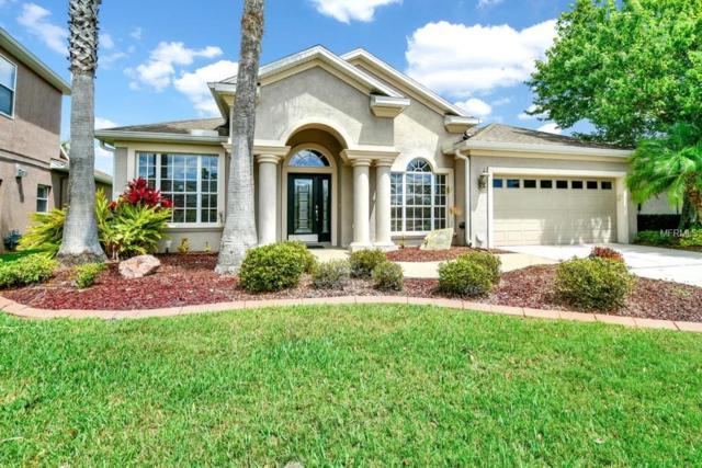 27447 Kirkwood Circle, Wesley Chapel, FL 33544 (MLS #O5777261) :: Team Bohannon Keller Williams, Tampa Properties