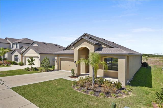 611 Silverthorn Place, Groveland, FL 34736 (MLS #O5777708) :: RealTeam Realty