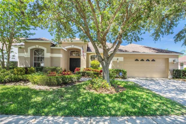 8831 Torchwood Drive, Trinity, FL 34655 (MLS #O5777825) :: Myers Home Team