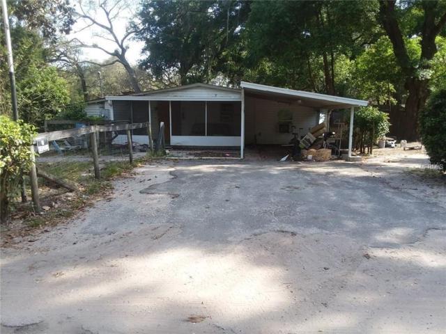 20964 SE 155TH Street, Umatilla, FL 32784 (MLS #O5777869) :: Baird Realty Group