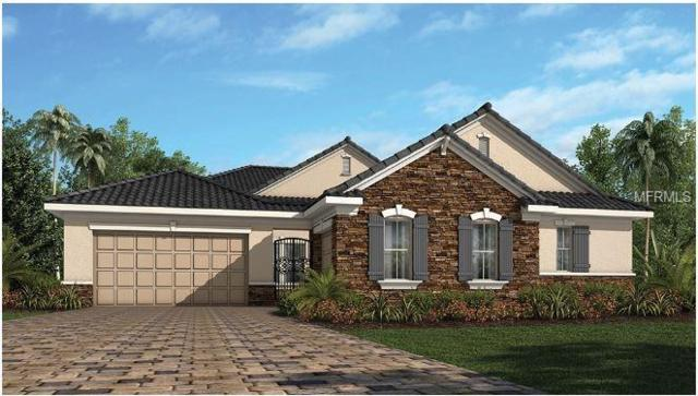 1217 Estancia Woods Loop, Windermere, FL 34786 (MLS #O5777942) :: Bustamante Real Estate
