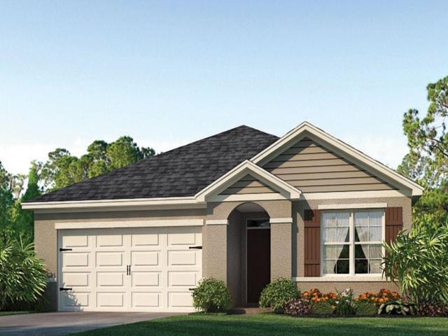 2456 White Poppy Drive, Kissimmee, FL 34747 (MLS #O5778333) :: Bustamante Real Estate