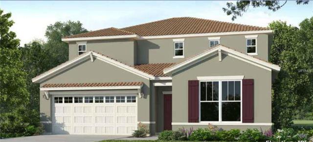 7028 Oakwood Street, Davenport, FL 33837 (MLS #O5778380) :: NewHomePrograms.com LLC