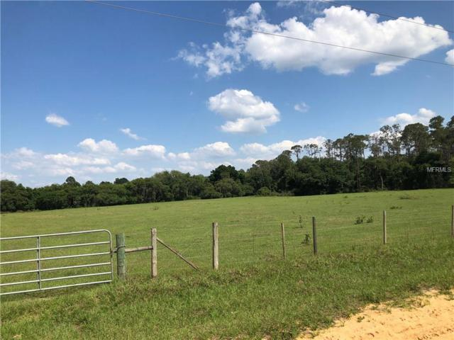 22428 N Buckhill Road, Howey in the Hills, FL 34737 (MLS #O5778435) :: GO Realty