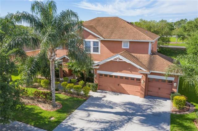 3621 Pawleys Loop S, Saint Cloud, FL 34769 (MLS #O5778442) :: Godwin Realty Group