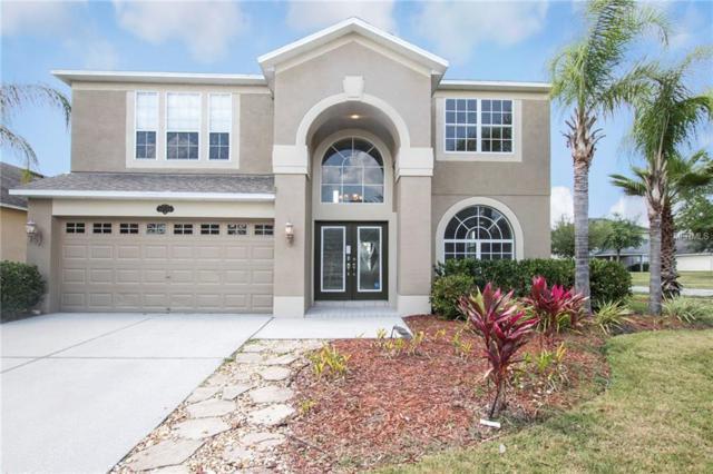 20126 Still Wind Drive, Tampa, FL 33647 (MLS #O5778447) :: Dalton Wade Real Estate Group