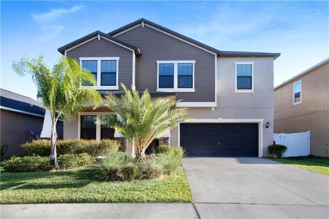 11705 Winterset Cove Drive, Riverview, FL 33579 (MLS #O5778551) :: Medway Realty